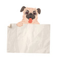 pug with white paper vector image