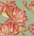seamless pattern of cactus flowers vector image vector image