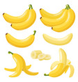 cartoon bananas tropical yellow fruit peeled vector image
