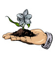cartoon image of flower growing in palm of hand vector image