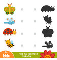 find correct shadow education game collection vector image vector image
