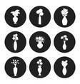 flowers bouquet silhouettes vector image