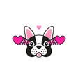 french bulldog fall in love meme sticker vector image