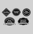 premium quality label badges vector image