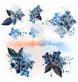 set detailed flowers imitation watercolor vector image