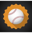 Sport Ball Baseball Flat icon background vector image
