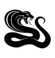 black snake sign vector image vector image