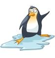 cartoon character penguin vector image vector image
