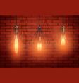decorative edison light bulb wire shade vector image vector image