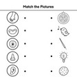 five senses matching game for kids match vector image vector image