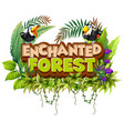 font design for word enchanted forest with toucan vector image