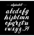 Hand written brush alphabet vector image vector image