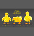 hen chicken newborn little vector image