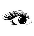 logo of eyelashes stylized hair abstract lines vector image vector image