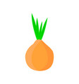 onion icon in flat style onion logo vector image vector image