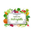 template with vegetables vector image vector image