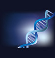 abstract dna chain vector image
