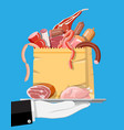collection meat in tray vector image vector image