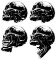 Detailed graphic skull in profile projection set vector image vector image