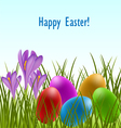 Easter card with crocus and eggs vector image vector image