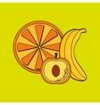 Fruits icon design vector image vector image