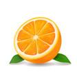 half of orange icon vector image vector image
