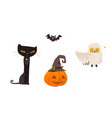 halloween objects - cat owl bat pumpkin lantern vector image vector image