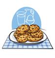 oatmeals cookies vector image