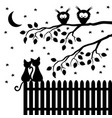 two cats on a wooden fence vector image