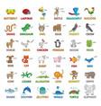 cartoon animals for children education vector image