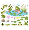 cartoon frogs cute amphibian mascots frogspawn vector image vector image