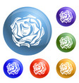 daisy rose icons set vector image