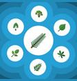 flat icon nature set of acacia leaf foliage vector image vector image