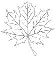 Leaf outline stroke vector image