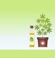 marijuana plant and cannabis oil medical vector image