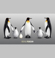 royal penguin realistic set vector image vector image