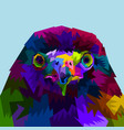 colorful eagle heads up close vector image