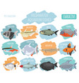 freshwater aquarium fishes breeds icon set flat vector image vector image