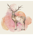 hand drawn deer with watercolor background vector image vector image