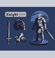 knight armor set vector image