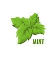 logo mint farm design vector image vector image