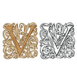 vintage initial letter v with baroque decoration vector image vector image