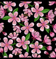 cherry blossom embroidery seamless pattern vector image vector image