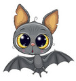 cute bat isolated on a white background vector image