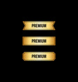 set of gold premium labels vector image