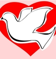 Dove of love vector image vector image