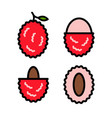 lychees icons set 2 vector image vector image