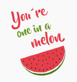 one in a melon vector image vector image