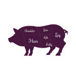 pig pork meat cuts butcher icon vector image