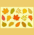 set of hand drawn autumn leaves vector image